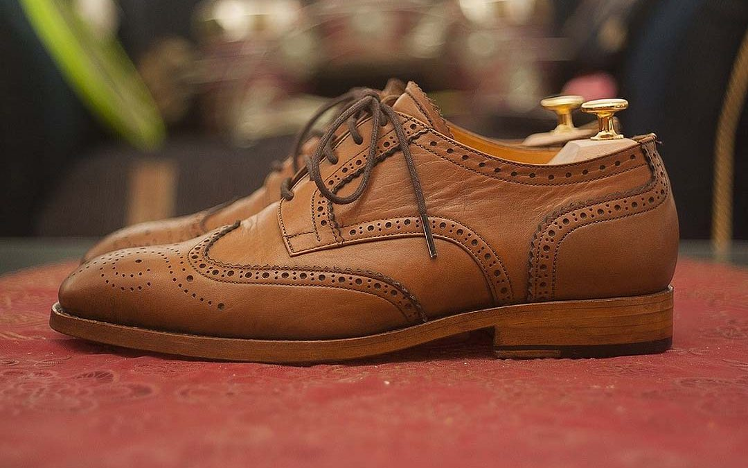 ¿Cuáles son los tipos de piel para calzado?